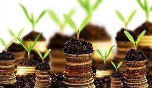 ایده سرمایه گذاری برای پولدار شدن