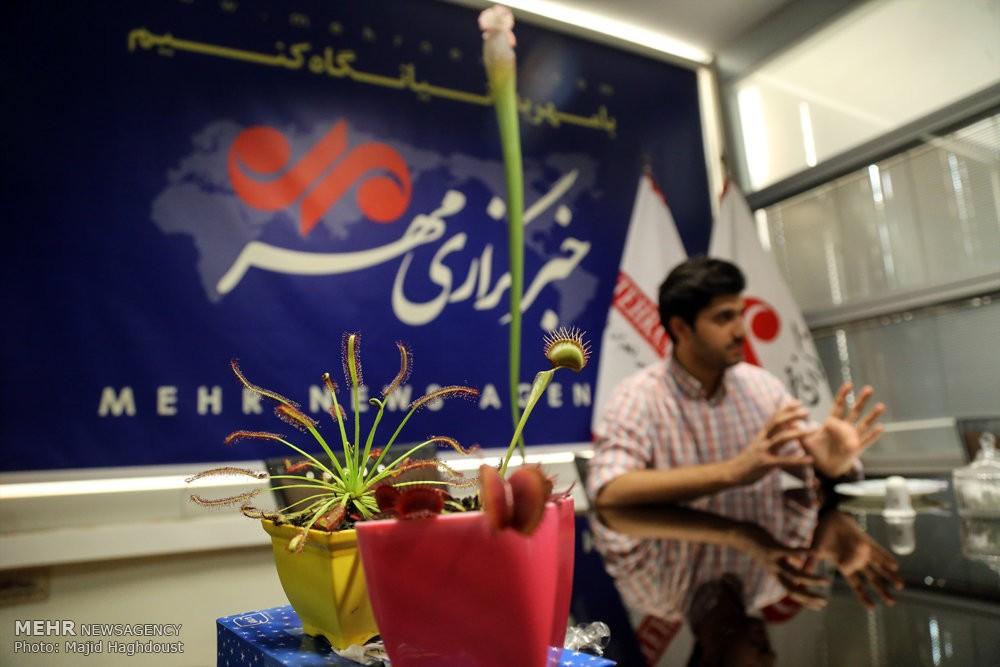 بازار جذاب فروش گیاه گوشتخوار در ایران!