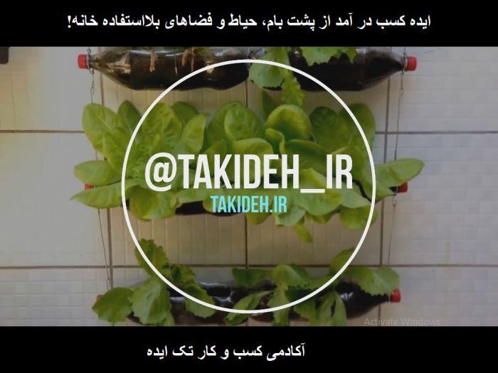 ایده ساخت باغ معلق در خانه