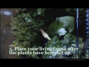 افزودن جانداران به تراریوم