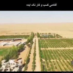 مجتمع کشت و صنعت مجید آباد