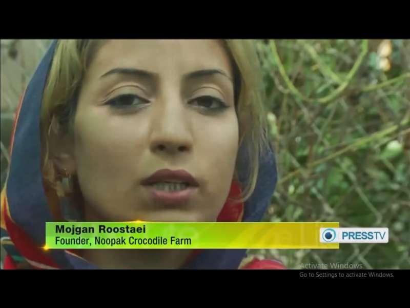 خانم مژگان روستایی موسس اولین مزرعه پرورش کروکودیل در خاورمیانه