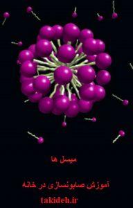 میسل (Micelles)