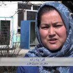 پرورش بودنه (بلدرچین)،کارآفرینی بانوی خلاق افغانستانی