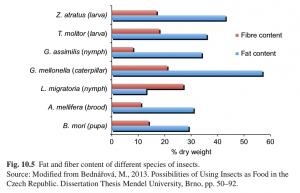 مقدار چربی و فیبر در حشرات خوراکی