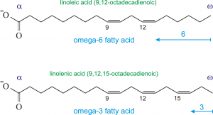 حشرات خوراکی غنی از اسیدهای چرب امگا ۳ و امگا ۶ هستند