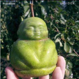 ایده تولید میوه های شکل دار در ایران