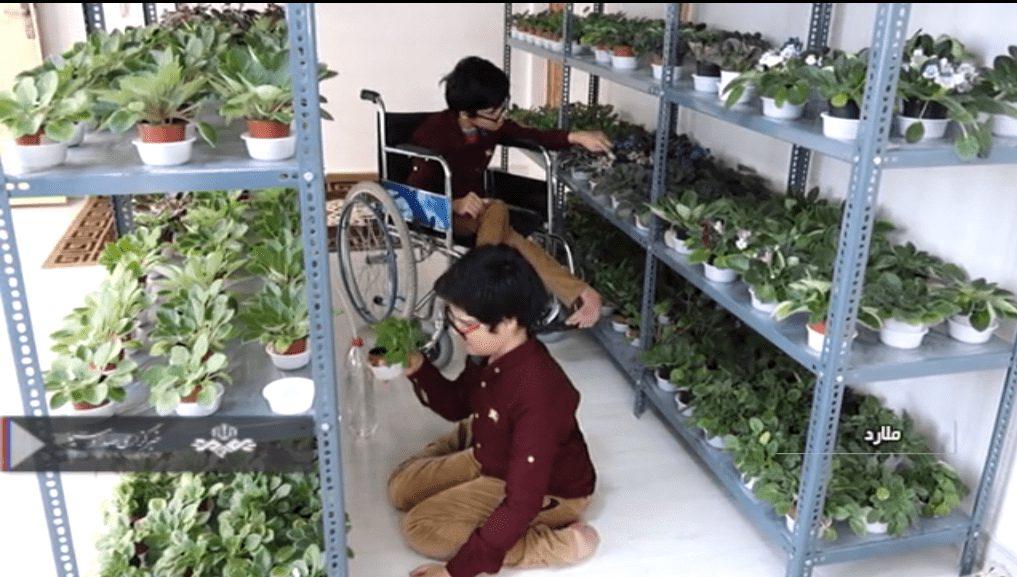 پرورش گل و گیاه در خانه توسط برادران معلول جسمی حرکتی