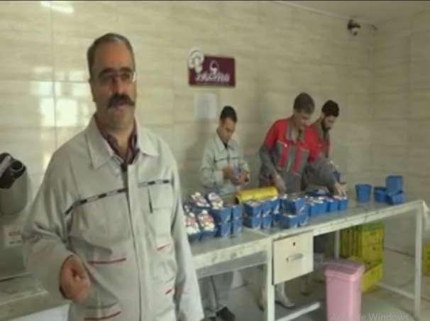 صادرات قارچ خوراکی به عراق، دبی و ترکیه