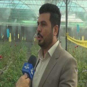کارآفرینی با راه اندازی گلخانه کشت گل به روش هیدروپونیک