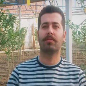 کارآفرینی با راه اندازی گلخانه پرورش درخت لیمو ترش