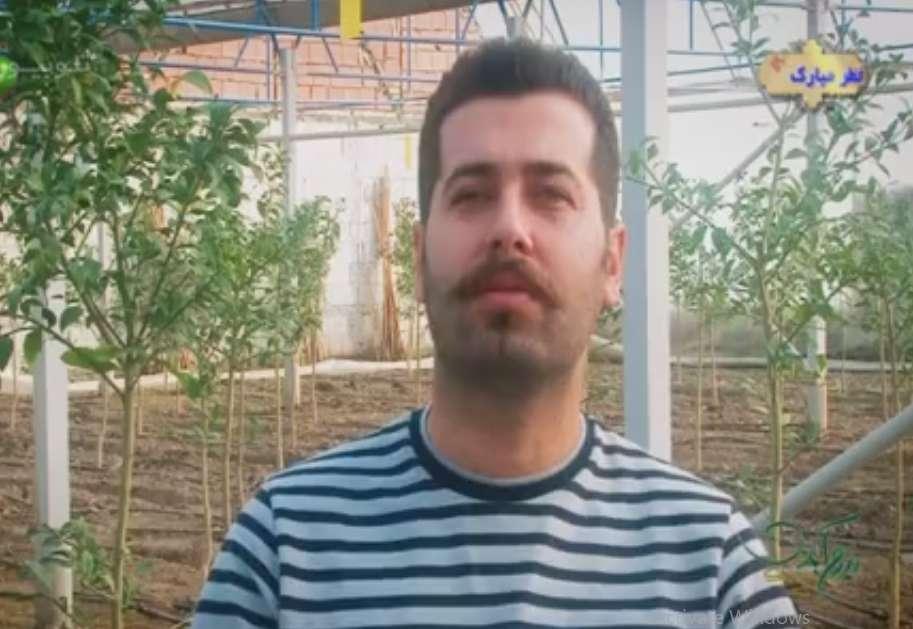 کارآفرینی با راه اندازی گلخانه پروش درخت لیمو ترش
