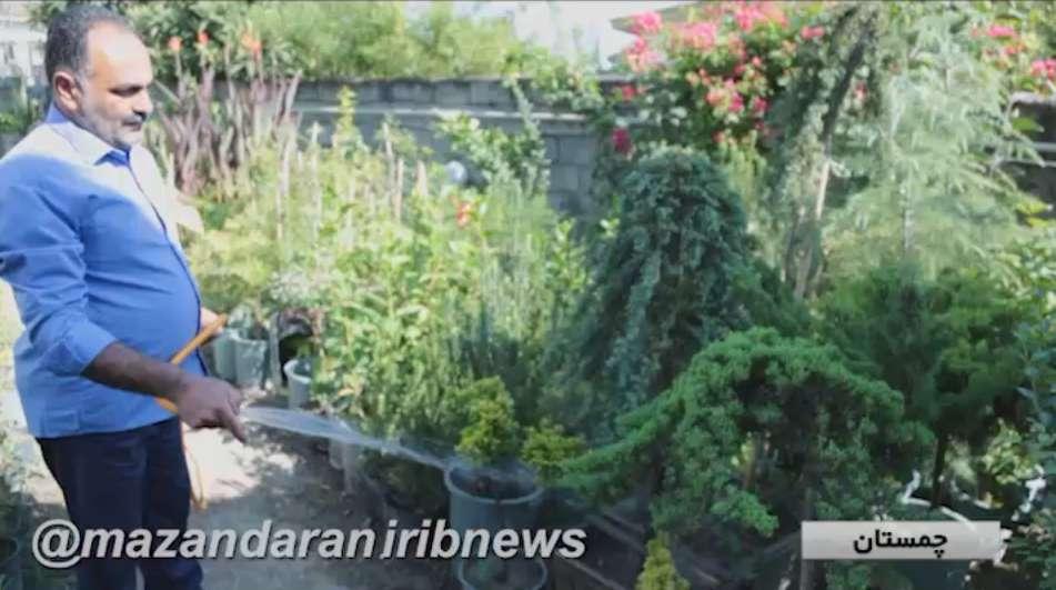 ایده کارآفرینی با پرورش گل و گیاه در منزل