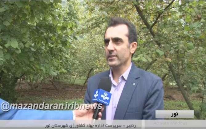 رنجبر معاون جهاد کشاورزی شهرستان نور