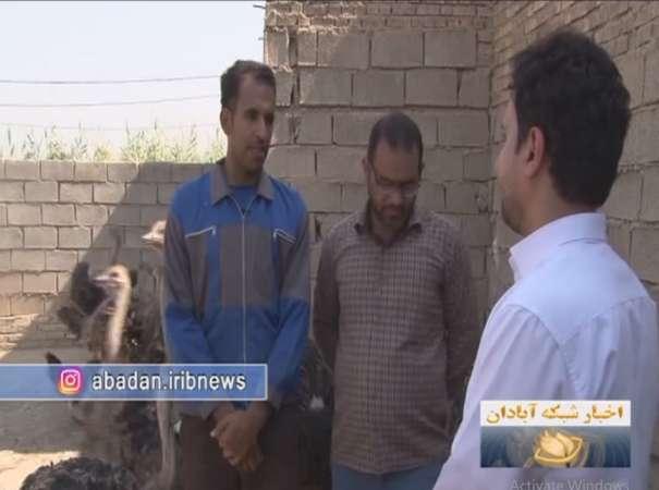 اولین پرورش دهنده شترمرغ در خرمشهر