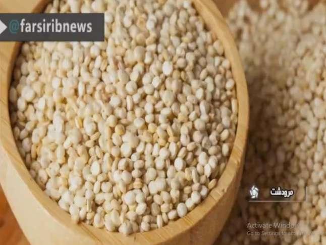 کینوآ جایگزین برنج!