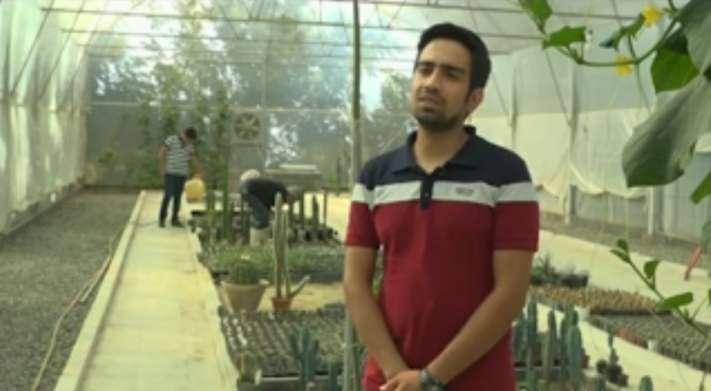علی بهامجو کارآفرین در حوزه پرورش انواع کاکتوس