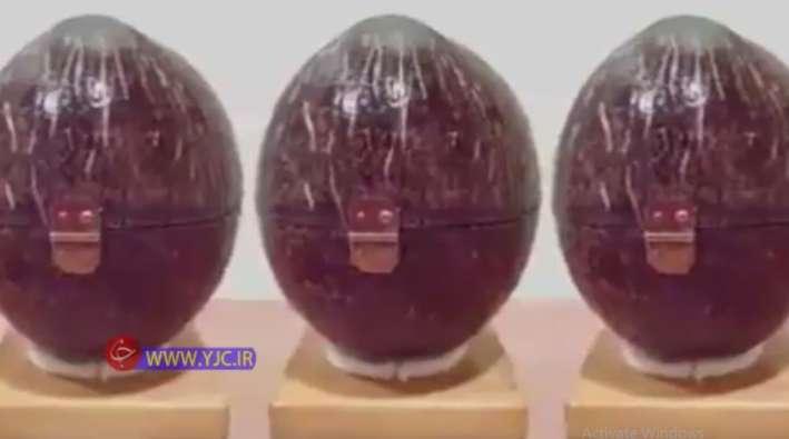 ایده ساخت محصولات صنایع دستی از نارگیل