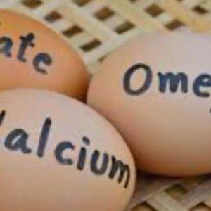 ایده کارآفرینی با غنی سازی تخم مرغ