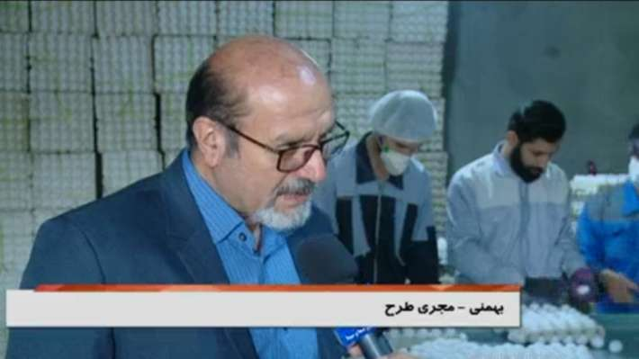 بهمنی کارآفین در حوزه تولید تخم مرغ