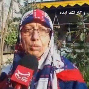 کسب و کار خانگی با کرم ورمی کمپوست