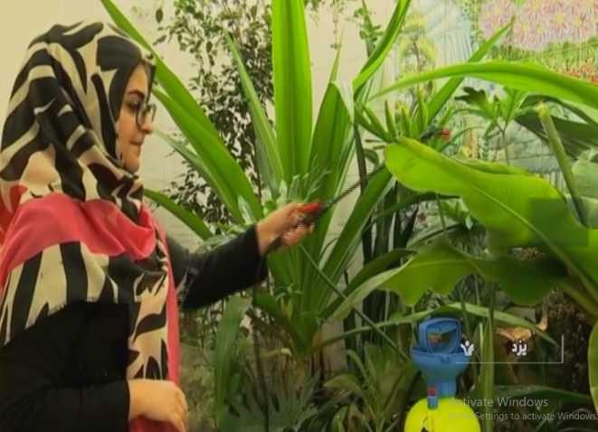 پرورش گل و گیاه در منزل زوج کارآفرین موفق