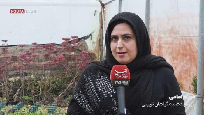 مریم امامی پرورش دهنده گیاهان تزیینی آپارتمانی