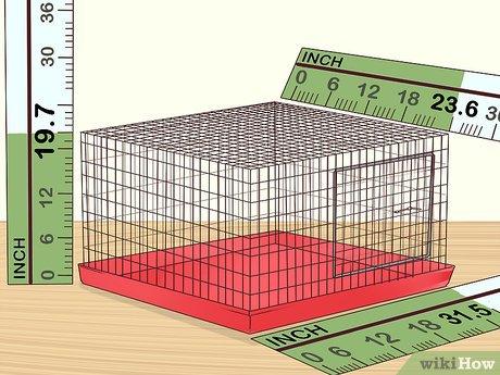 قفس مناسب برای پرورش مرغ عشق در خانه