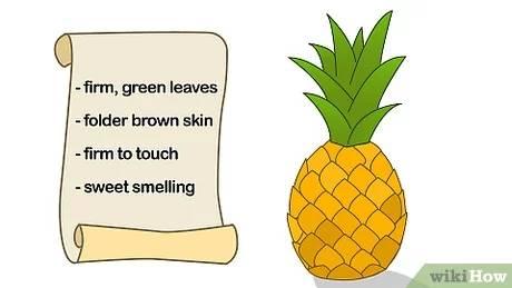 آموزش پرورش و تکثیر آناناس در خانه