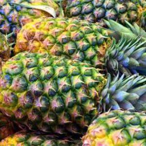 آموزش پرورش آناناس در منزل