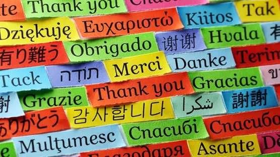 کسب و کار آموزش زبان های خارجی (FOREIGN LANGUAGE INSTRUCTION BUSINESS)