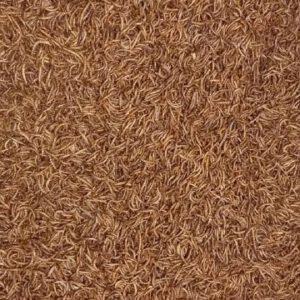 خرید میلورم خشک با قیمت مناسب و کیفیت بالا (بسته 350 گرمی)